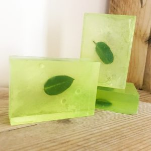 eucalyptus grapefruit soap